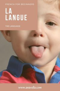 FRENCH FOR BEGINNERS LE VISAGE